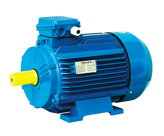 Asi Electric Y2 Series Three Phase Asynchronous Motor Eff2